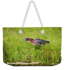Weekender Tote Bag featuring the photograph Green Heron On The Hunt by Ricky L Jones