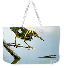 Weekender Tote Bag featuring the photograph Green Heron Sees Minnow by Robert Frederick