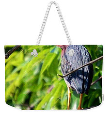 Weekender Tote Bag featuring the photograph Green Heron by Sumoflam Photography