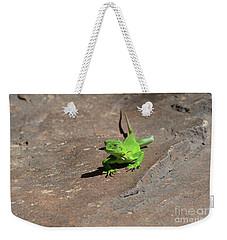 Green Iguana Creeping Across A Rock Weekender Tote Bag by DejaVu Designs