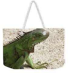Green Iguana On A Pathway Weekender Tote Bag by DejaVu Designs
