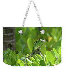 Green Iguana Peaking Out Of A Shrub Weekender Tote Bag by DejaVu Designs
