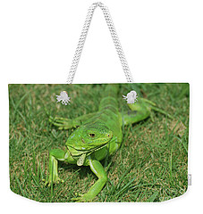 Green Iguana Stretched Out In Grass Weekender Tote Bag by DejaVu Designs