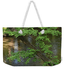 Weekender Tote Bag featuring the photograph Green Is For Spring by Skip Willits