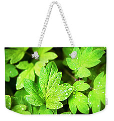 Weekender Tote Bag featuring the photograph Green Leaves by Christina Rollo