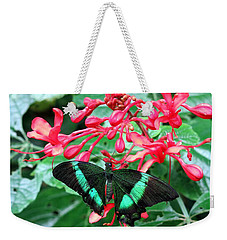 Green Moss Peacock Butterfly Weekender Tote Bag by Betty Buller Whitehead