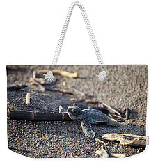 Green Sea Turtle Hatchling Weekender Tote Bag