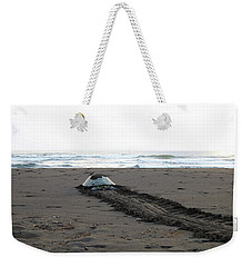 Green Sea Turtle Returning To Sea Weekender Tote Bag