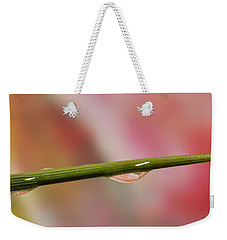 Weekender Tote Bag featuring the photograph Green Stem by Arthur Fix