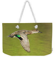 Green-winged Teal 6320-100217-2cr Weekender Tote Bag