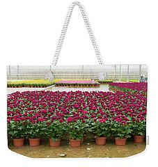 Greenhouse Interior Weekender Tote Bag
