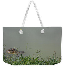 Greenwood Gator Farm Weekender Tote Bag by Cynthia Powell