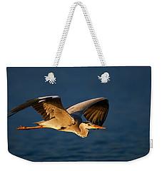 Grey Heron In Flight Weekender Tote Bag