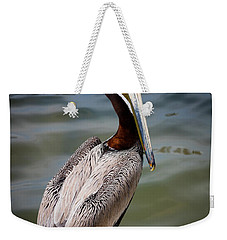 Grey Pelican Weekender Tote Bag by Inge Johnsson