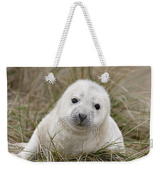 Grey Seal Pup Weekender Tote Bag