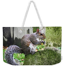Weekender Tote Bag featuring the photograph Grey Squirrel  by Geoff Smith