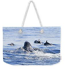 Grey Whale 1 Weekender Tote Bag