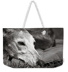 Weekender Tote Bag featuring the photograph Greyful by Angela Rath