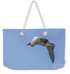 Weekender Tote Bag featuring the photograph Greylag Goose - Anser Anser by Jivko Nakev