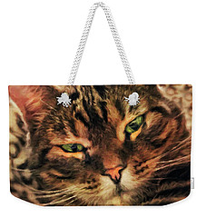 Griffin My Bengal Cat Weekender Tote Bag