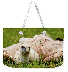 Weekender Tote Bag featuring the photograph Griffon Vulture by Nick Biemans