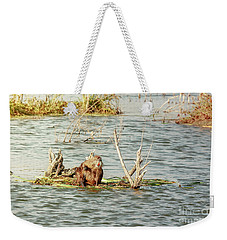 Weekender Tote Bag featuring the photograph Grinning Nutria On Reeds by Robert Frederick