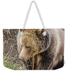 Weekender Tote Bag featuring the photograph Grizzly Mama by Yeates Photography