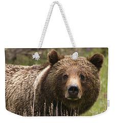 Grizzly Portrait Weekender Tote Bag by Steve Stuller