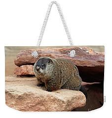 Groundhog Weekender Tote Bag by Louise Heusinkveld