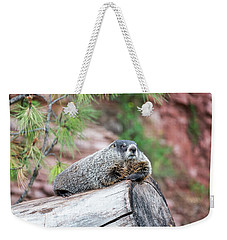 Groundhog On A Log Weekender Tote Bag by Jess Kraft