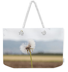 Groundsel In The Wind Weekender Tote Bag