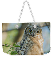 Growing Into A Great Horned Owl Weekender Tote Bag