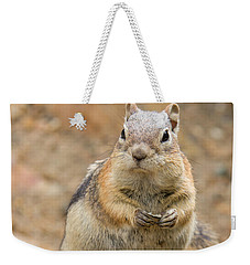Grumpy Squirrel Weekender Tote Bag by Chris Scroggins