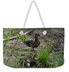 Guarding The Ducklings Weekender Tote Bag by Donald C Morgan