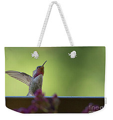 Weekender Tote Bag featuring the photograph Guarding The Turf by Anne Rodkin