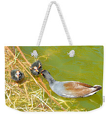 Weekender Tote Bag featuring the photograph Guilty by Rosalie Scanlon