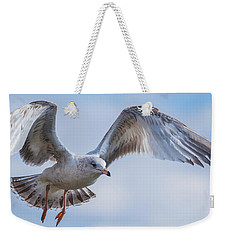Gull Hover In Gray Weekender Tote Bag by Jeff at JSJ Photography