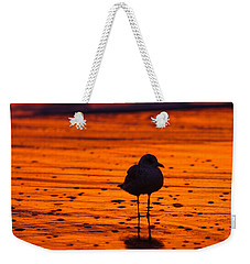 Gull Caught At Sunrise Weekender Tote Bag