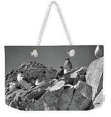 Weekender Tote Bag featuring the photograph Gulls On Guard - Pt Mugu, California by Samuel M Purvis III