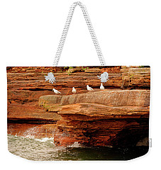 Gulls On Outcropping Weekender Tote Bag