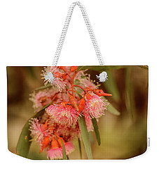 Weekender Tote Bag featuring the photograph Gum Nuts 2 by Werner Padarin
