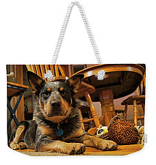Weekender Tote Bag featuring the photograph Gunner The Blue Heeler by Cricket Hackmann