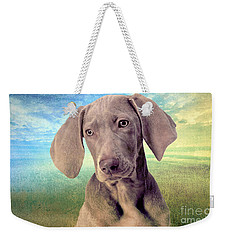Gunshy Weimaraner Looking For Loving Home Weekender Tote Bag