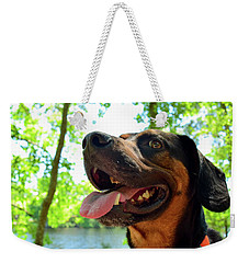 Gus On A Hike Weekender Tote Bag