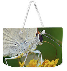 Hairstreak Closeup Weekender Tote Bag