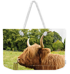 Weekender Tote Bag featuring the photograph Hairy by Christi Kraft