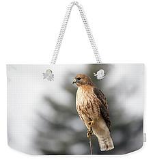Hal The Hybrid Portrait 1 Weekender Tote Bag