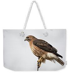 Hal The Hybrid Portrait 2 Weekender Tote Bag
