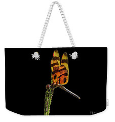 Weekender Tote Bag featuring the photograph Halloween Pennant Dragonfly .png by Al Powell Photography USA