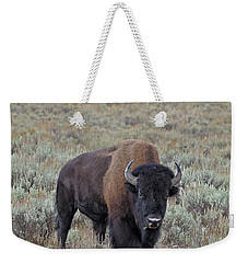 Handsome Bison Bull Weekender Tote Bag